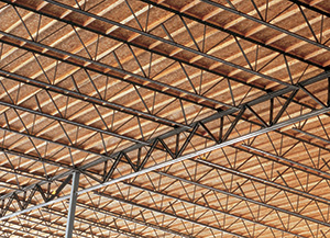 Panelized roof system