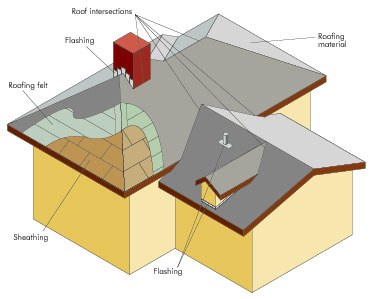 Cost Of Shingle Roof