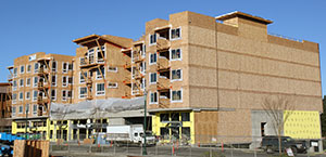 Understanding Structural I Sheathing