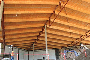 Glulam at Great Wolf Lodge
